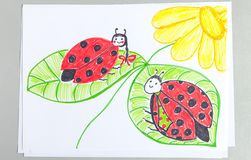 Kid drawing of two cute ladybugs sitting on green leaves of flower. Colorful felt-tip pen child scribble of red with black spots insects in nature royalty free stock photography