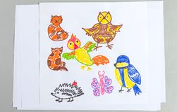 Kid drawings set of different wild animals birds and insects royalty free stock images