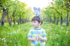Kid on Easter egg hunt in blooming spring garden. boy searching for colorful eggs in flower meadow.  Stock Photo