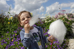 Kid eating cotton candy Royalty Free Stock Image