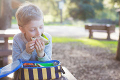 Kid eating lunch at school. Beautiful schoolboy eating sandwich for lunch during recess time at school stock image