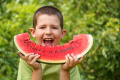 Kid eating watermelon Royalty Free Stock Image
