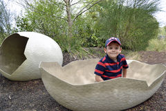 Kid in eggshell Stock Image