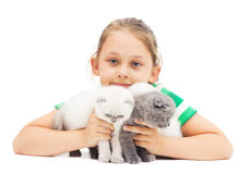 Kid embraces three British lop-eared kitten Stock Photography