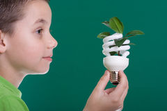 Kid with energy saving bulb Stock Image