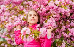 Kid enjoying pink cherry blossom. Tender bloom. Pink is the most girlish color. Bright and vibrant. Pink is my favorite. Little girl enjoy spring. Kid on pink royalty free stock photos