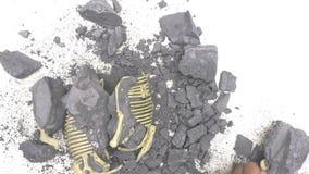 Kid excavating animal bones from rock. S stock video