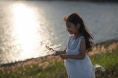 Kid fashion. Cute little asian girl wearing white clothes and flower grass in her hand. Royalty Free Stock Photography