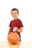 Kid feeding his piggy bank Royalty Free Stock Image