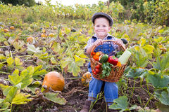 Kid on field with basket of vegetables Royalty Free Stock Images
