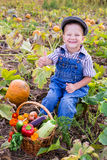 Kid on field with basket of vegetables Stock Image