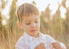 Kid in field playing with spikes at summer sunset Royalty Free Stock Image