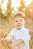 Kid in field playing with spikes at summer sunset Stock Photography
