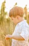 Kid in field playing with spikes at summer sunset Royalty Free Stock Photo
