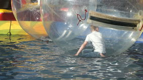 Kid flounders inside big inflatable ball in a pool stock footage