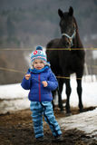 Kid in front of a stud. Cute kid in front of a big horse Stock Image