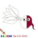 Kid game to be colored by example half. Happy Beet, the coloring book to educate preschool kids with easy gaming level, the kid educational game to color the stock illustration