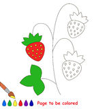 Kid game to be colored by example half. Small Red wild Strawberry, the coloring book to educate preschool kids with easy gaming level, the kid educational game vector illustration