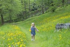 Kid in a garden of flowers Stock Photo