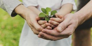 Kid Gardening Greenery Growing Leisure Stock Photos