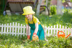 Kid gardening and watering. A kid gardening and watering royalty free stock images