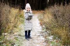 Kid girl in the autumn forest Stock Photos