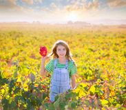 Kid girl in autumn vineyard field holding hand red leaf Royalty Free Stock Photos