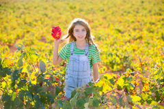 Kid girl in autumn vineyard field holding hand red leaf Royalty Free Stock Images