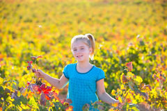 Kid girl in autumn vineyard field holding red grapes bunch. Blond Kid girl in happy autumn vineyard field holding red leaf grapes bunch in hand Stock Photography