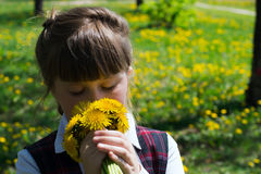 Kid girl with a bouquet of dandelions Royalty Free Stock Images