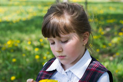 Kid girl with a bouquet of dandelions Stock Photos