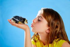 Kid girl with chicks playing on blue Stock Photos