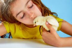 Kid girl with chicks playing on blue Stock Photo