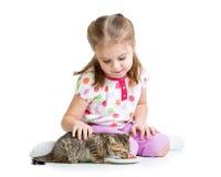 Kid girl feeding cat stock photos