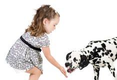 Kid girl feeding pet dog Stock Photography