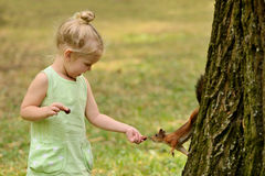 Kid girl feeds squirrel Royalty Free Stock Image