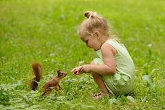 Kid girl feeds squirrel Royalty Free Stock Photos