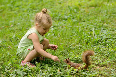 Kid girl feeds squirrel Royalty Free Stock Photography