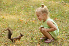Kid girl feeds squirrel. In the park stock photos
