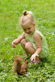 Kid girl feeds squirrel Stock Images
