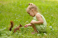 Kid girl feeds squirrel. In the park royalty free stock photos