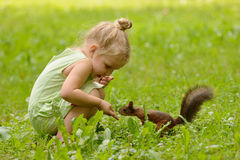 Kid girl feeds squirrel Royalty Free Stock Images