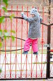 Kid girl on a fence Stock Images
