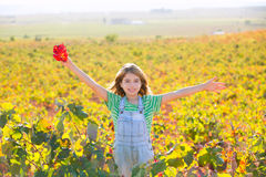 Kid girl in happy autumn vineyard field open arms with red leaf Royalty Free Stock Photos