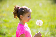 Kid girl looking dandelion flower in green meadow Royalty Free Stock Images