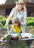 Kid girl and mother in domestic garden. Happy child and mom push the wheelbarrow with harvest. Healthy organic. Kid girl and her mother in domestic garden. Happy Royalty Free Stock Photography