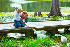 Kid girl and mother playing with ducks in lake Stock Photography