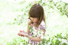 Kid girl playing with blossoming, spring, outdoors stock photos