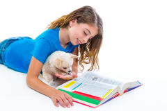 Kid girl with puppy chihuahua pet dog at homework Stock Photography