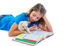 Kid girl with puppy chihuahua pet dog at homework Royalty Free Stock Photos